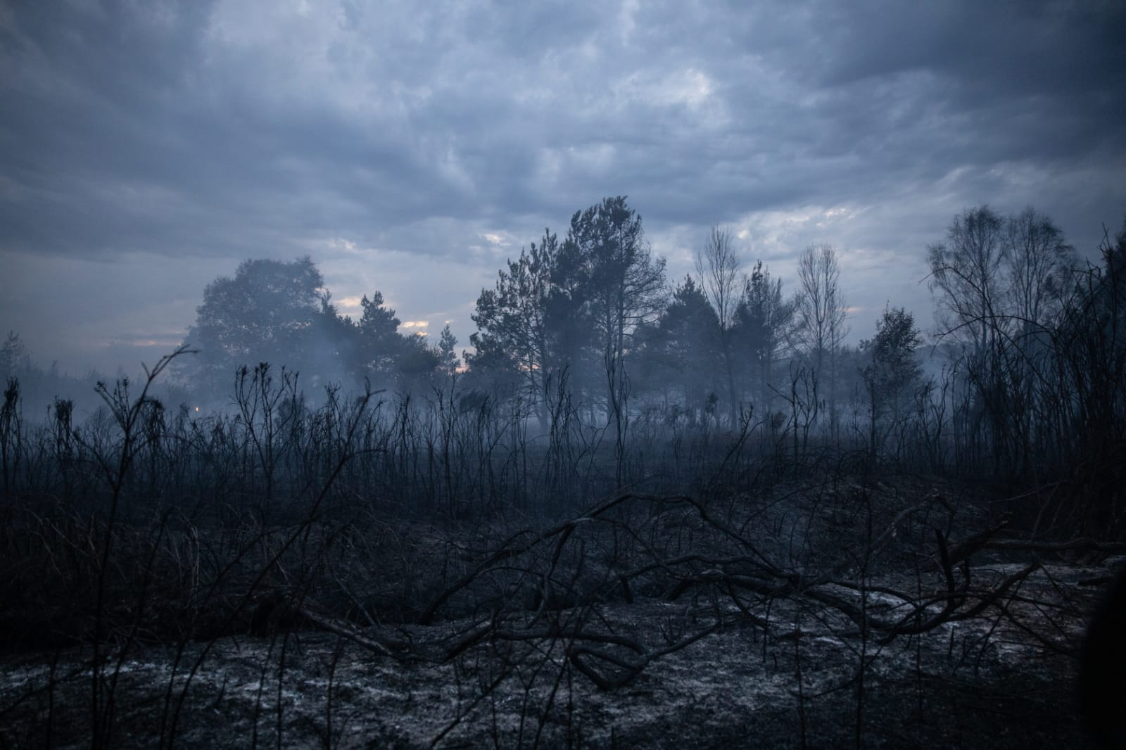 RRT supports Surrey F&R Service at Chobham wildfire